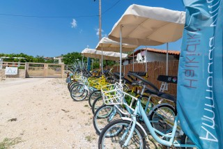 ammouda villas rent a bike