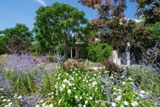facilities ammouda villas garden - 04