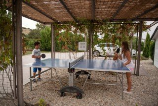 family ammouda villas ping pong