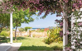 gallery ammouda villas garden view-01