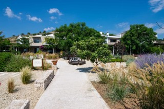 gallery ammouda villas garden view-06