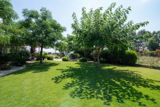 gallery ammouda villas garden view-07