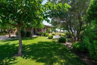 gallery ammouda villas garden view-09